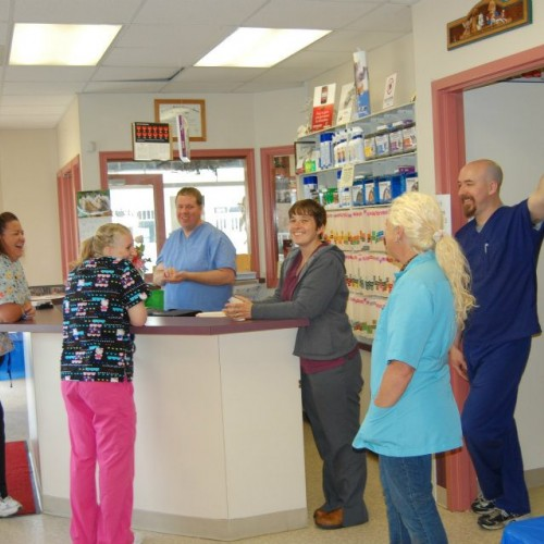 Danville Veterinary Clinic